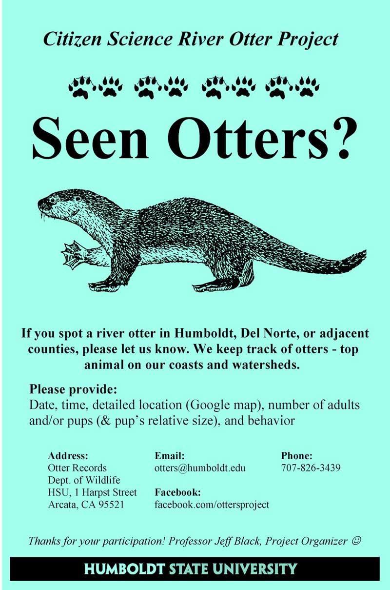 Seen Otters Flyer